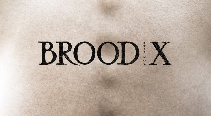 New Boss Hog album coming soon: Brood X
