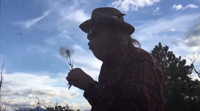 New Neil Young video: Almost Always